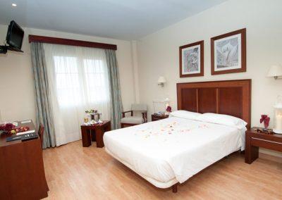 Hotel Santiago de Leon